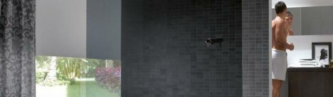 Стеклянные двери в душ от ведущей компании