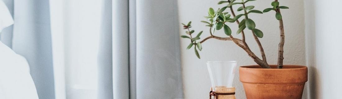 Простые способы улучшить запах в квартире