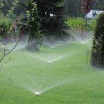 Что нужно знать про правильный полив газона