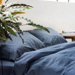 6 лучших растений для спальни
